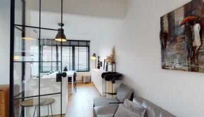 Prachtig rijhuis in Antwerpen 3D Model